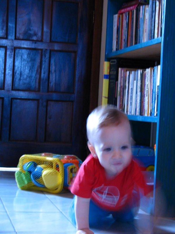 Francisco explorando a casa aos 11 meses